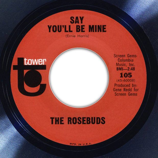 The Rosebuds Say You'll Be Mine Album Label The Face Song Of The Day