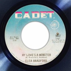 Clea Bradford - My Love is a Monster